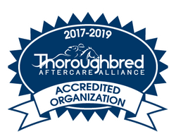 TAA Accredited