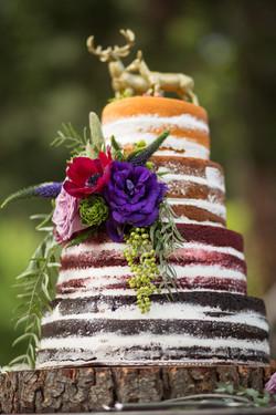 Naked Cake 004