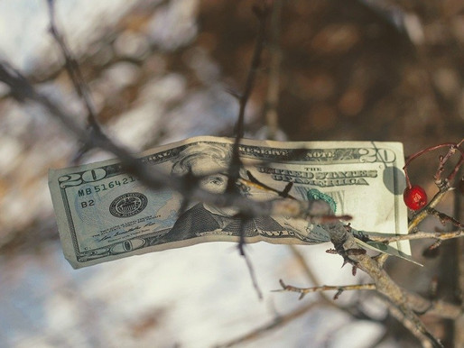 The curse of VC money and unsustainable growth in consumer startups