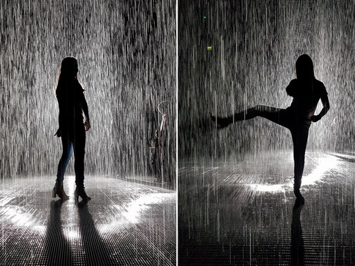 Our Experience at the the Rain Room in Sharjah