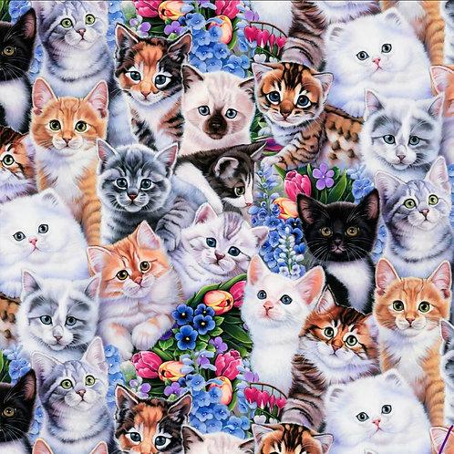 Kittens Face Mask