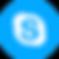 logo-skype.png