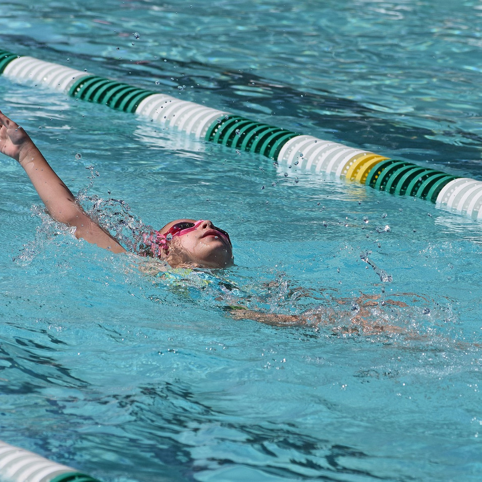 young-swimmer-2501548_1920.jpg