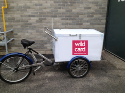 Tricycle with storage box
