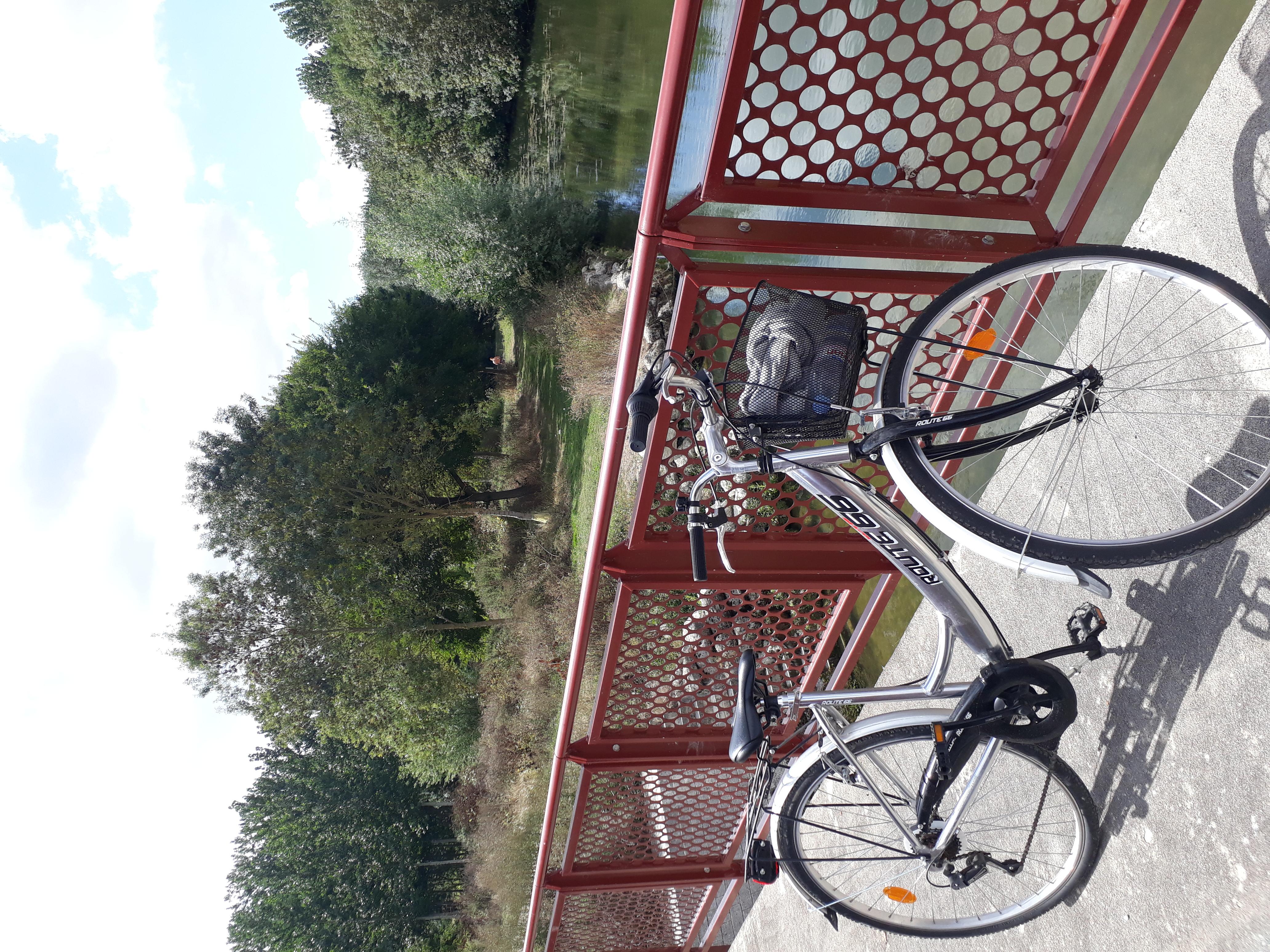location vélos sur place