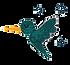 colibri-solo_edited.png
