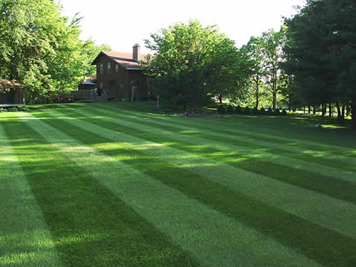 StripedLawn_favorite_london.52135847