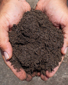 compost .jpg