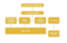 CLIP ORGANOGRAM_edited.png