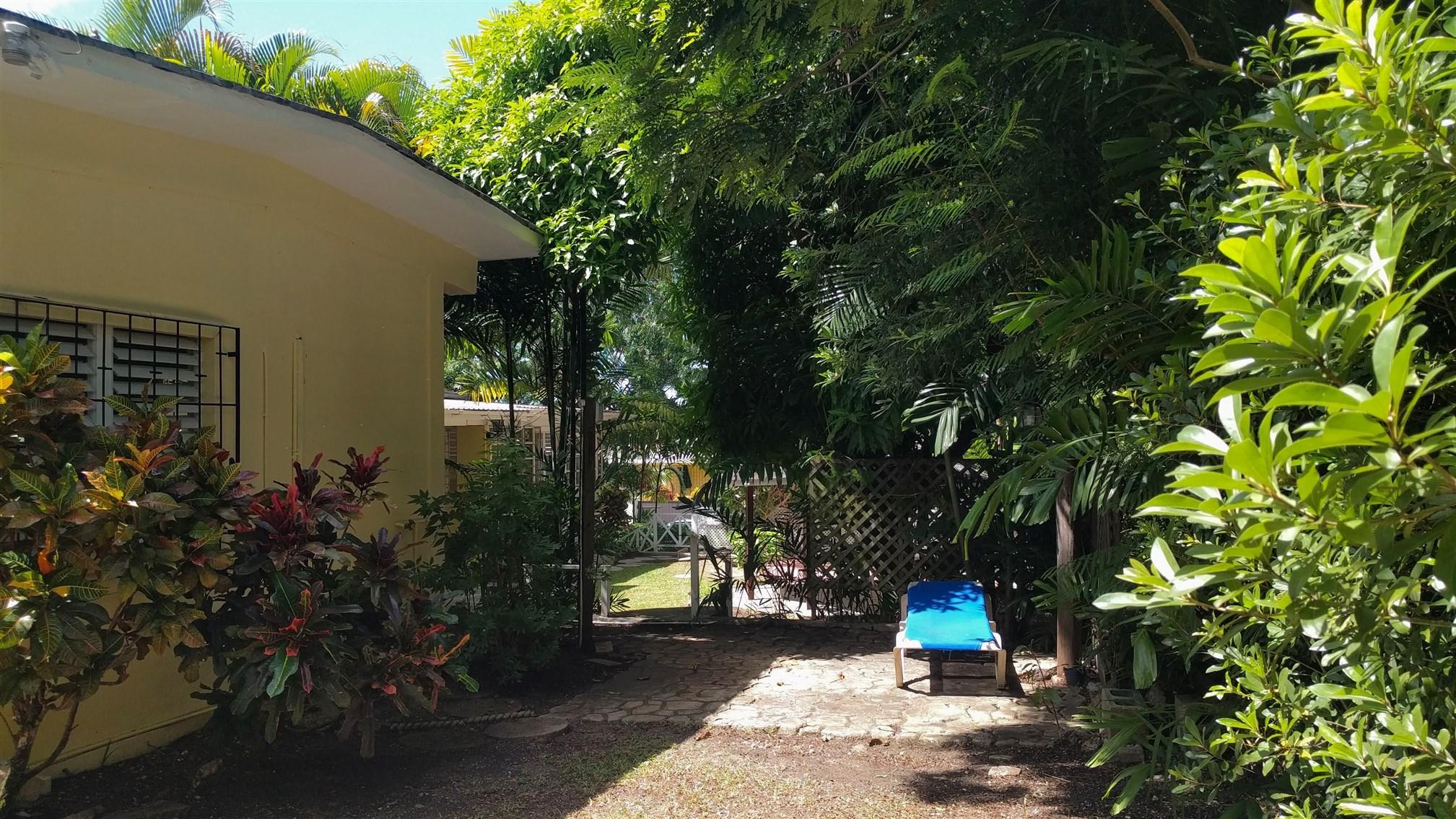 Garden, Poui Avenue