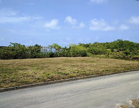 View of land for sale in Barbados