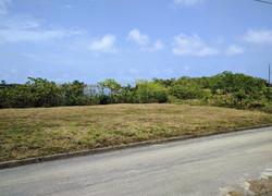 Mount Pleasant, St. Philip