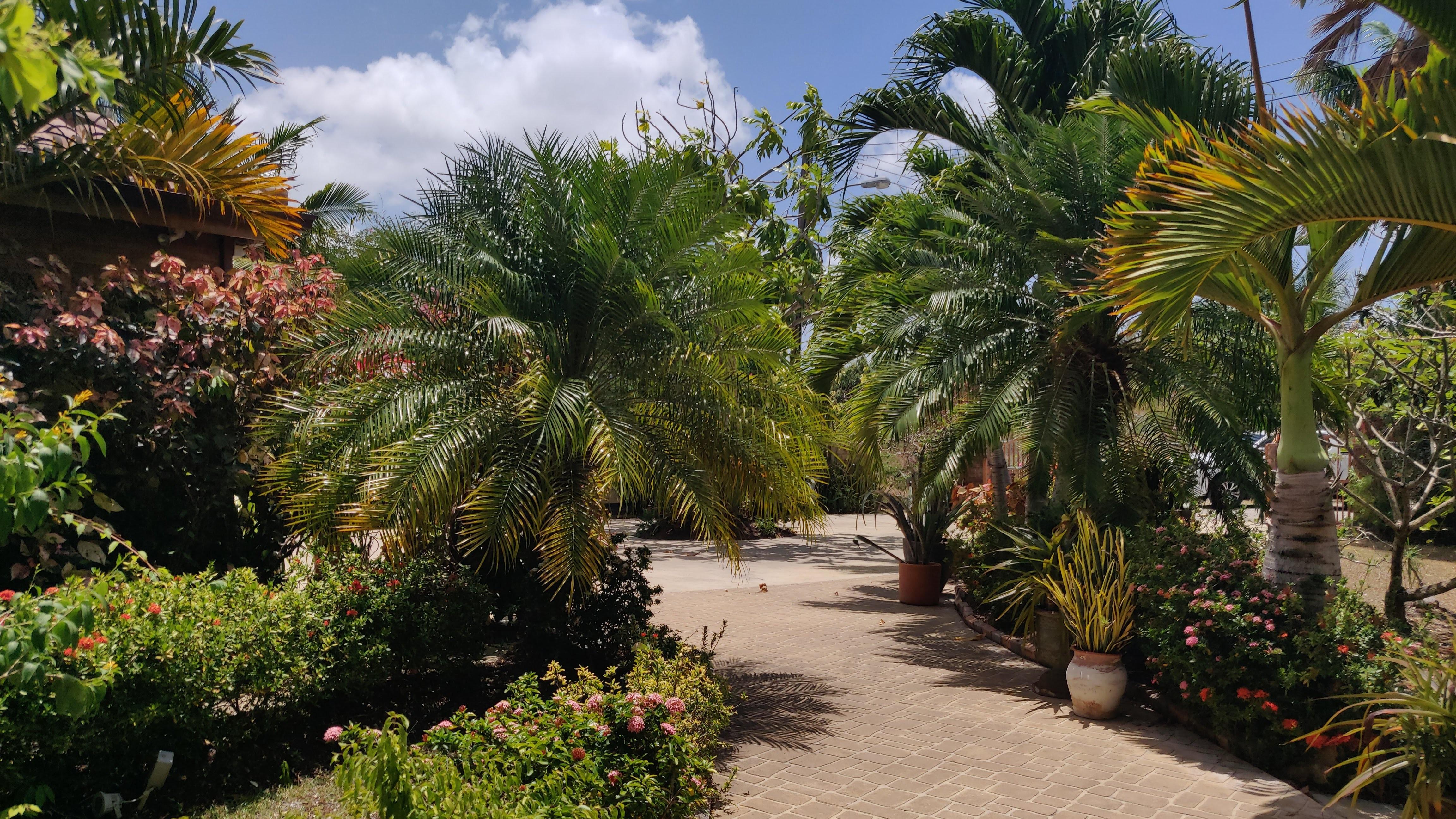 Gardens, Rowans, St. George