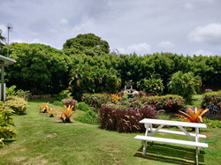 Gardens and Pond, Clermont Green, St. Michael