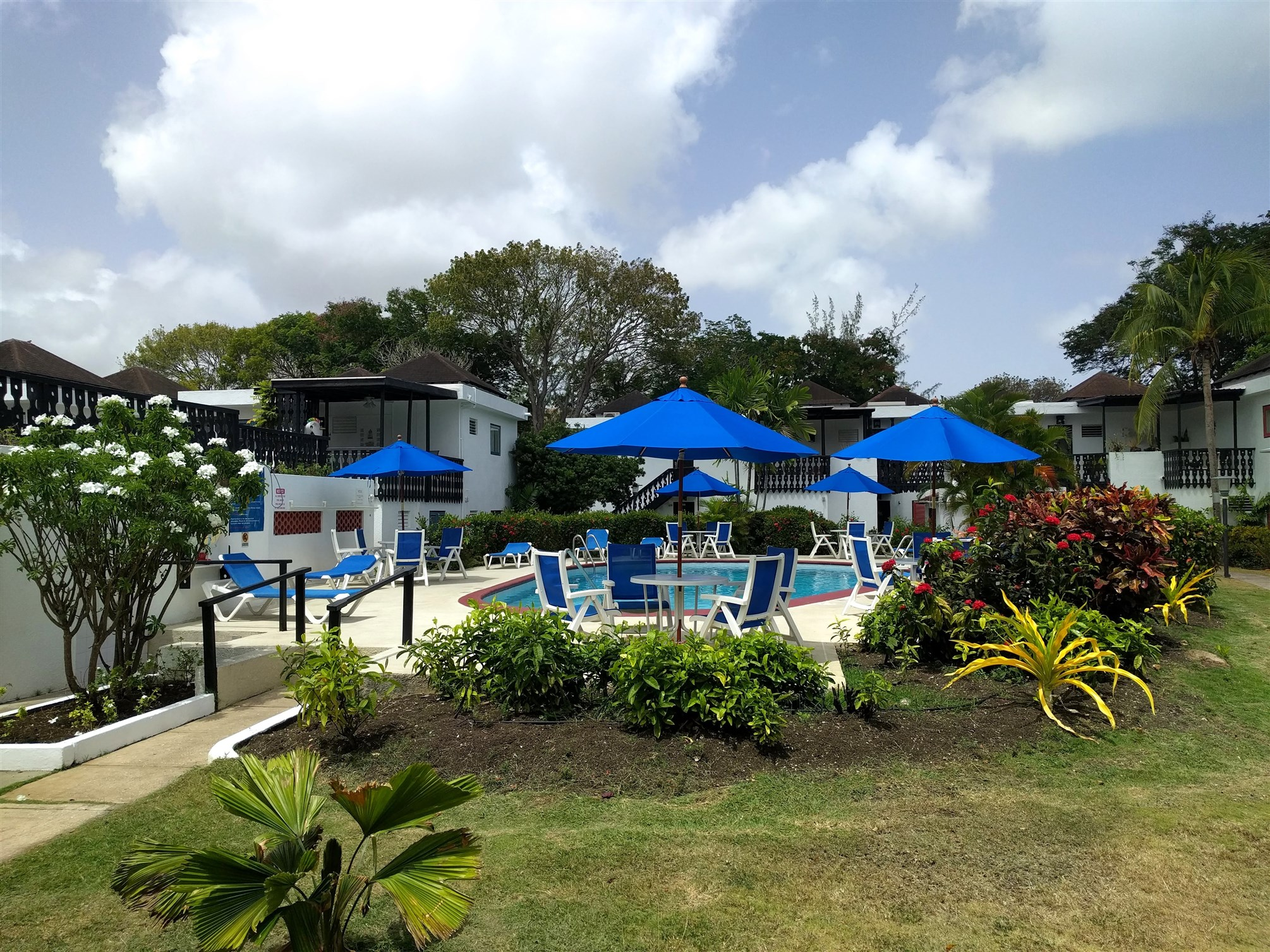 Swimming Pool, Club Rockley