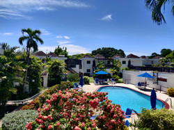 Swimming Pool and Deck, Club Rockley