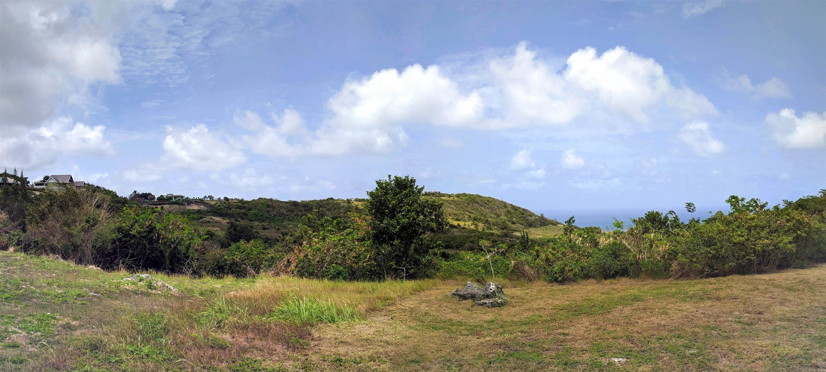 Mount Pleasant, St. Philip Panorama
