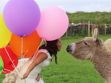 Stunning Devon Farm Wedding Videography