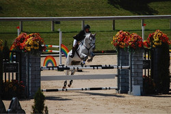 Jumping-an-Oxer