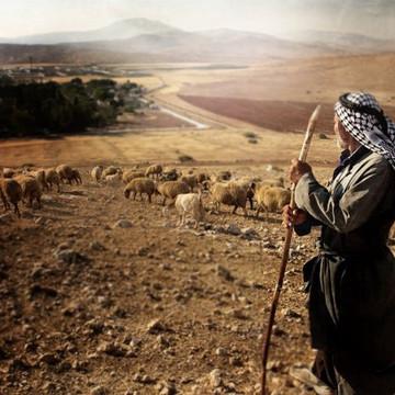 النبي إبراهيم #4: ماذا يريد الله مني؟