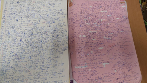 No one can read these 2 pages so far...