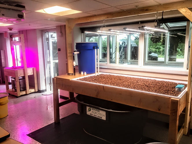 Aquaponics systems at University of Southern Maine