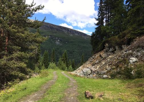 Vei til fjellet
