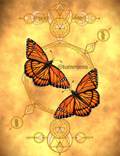 Personalized Light Code Activation by the Power of the Butterfly