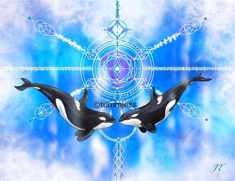 Light Code Activation by the Power of the Orca Whale
