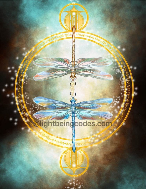 Light Code Activation by the Power of the Dragonfly