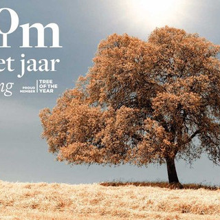 We even do PR for trees ! We created coverage for the Belgian Tree of the Year competition, sponsored by our client Fonds Baillet Latour – in regional & national media outlets.