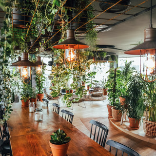 Interel Plus turned Viage, the Grand Casino of Brussels, into the place to be during the summer months: the rooftop bar Là-Haut Viage, mixing urban & green for the ultimate city experience!