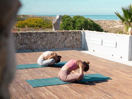 Los Principios del Yoga