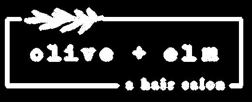 OE Logo White.png