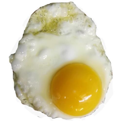 Add-on: Egg