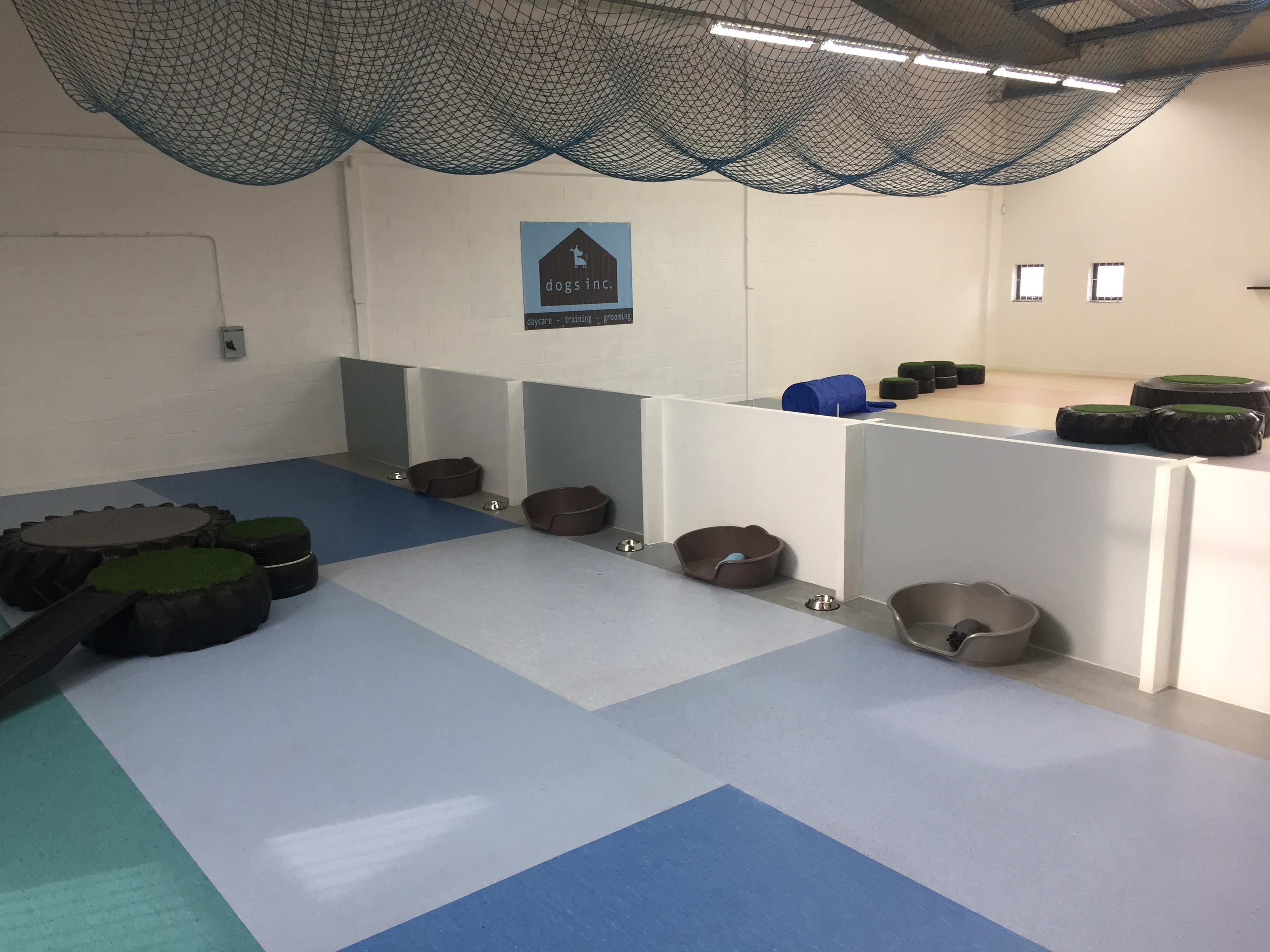 doggy day care sheffield