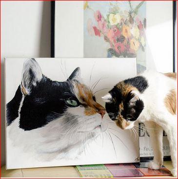 chat et chat