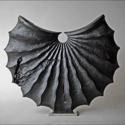 coquille-noire-50cm-BA