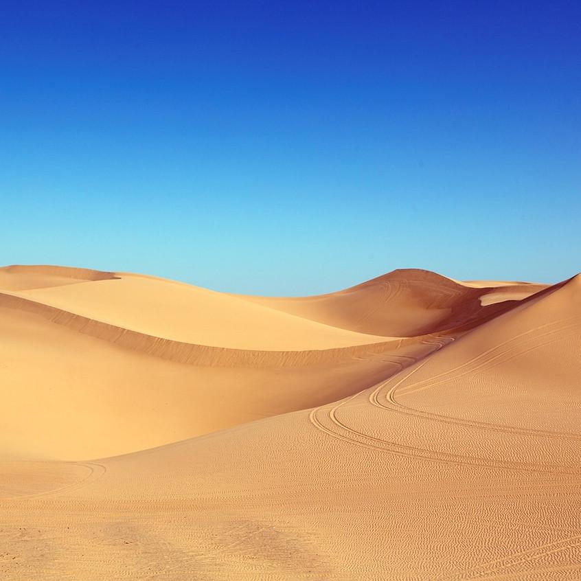 dans le désert à perte de vue