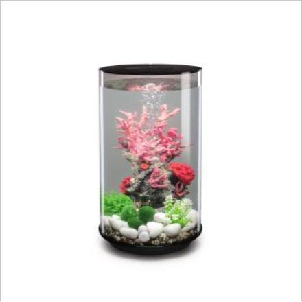 aquarium vase
