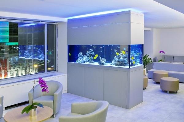 cloison aquarium