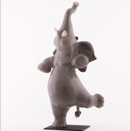 elephant cv