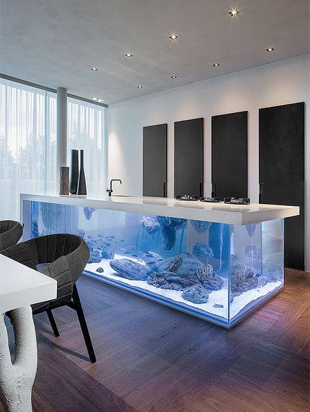 aquarium plan de travail
