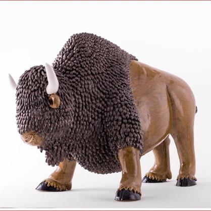 bison CV