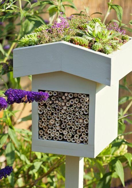decor de jardin habitat pour insectes