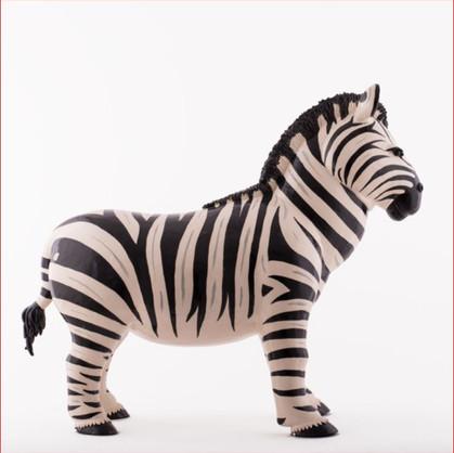 zebre cv