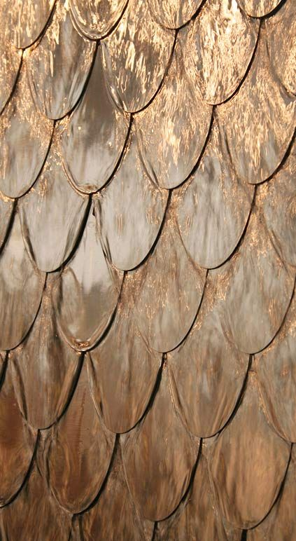 ecailles cuivre