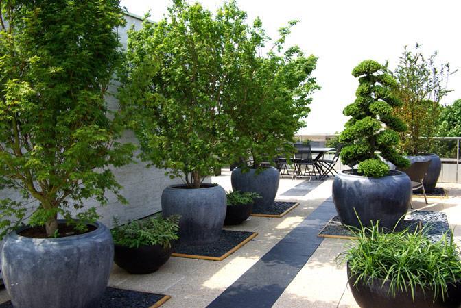 56868-jardin-design-et-contemporain-jardin-terrasse-avec-pots