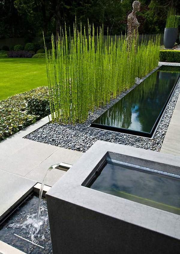aménagement-extérieur-ultramoderne-pièce-deau-bassin-herbes-décoratives