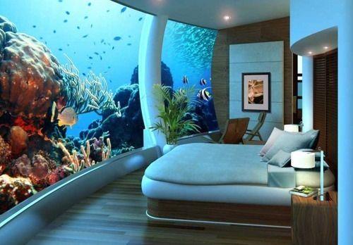 aquarium panoramique